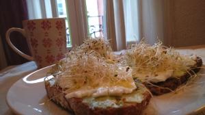 germinats per esmorzar